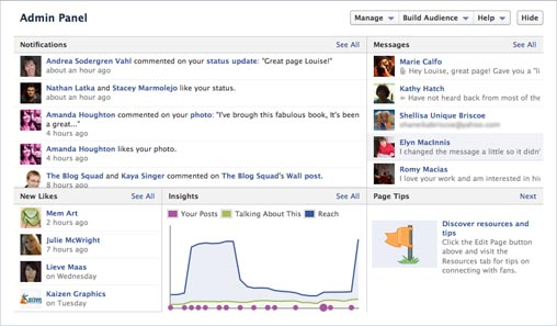 successful facebook business page admin panel