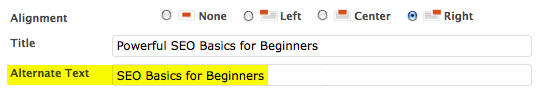 SEO Basics for Beginners: Alt text