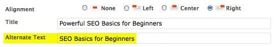 SEO Basics for using Alt text
