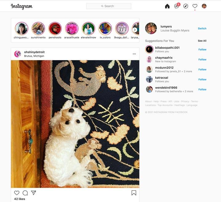 Instagram homepage on desktop.