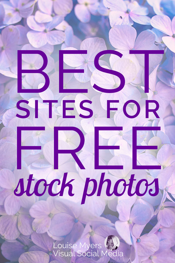 lavender pin image with text best free stock photo sites
