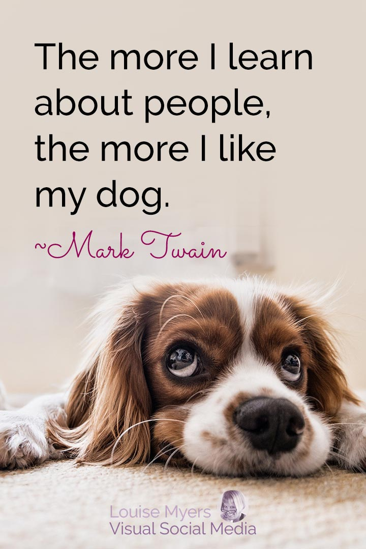 Mark Twain quote image: like dog more than people