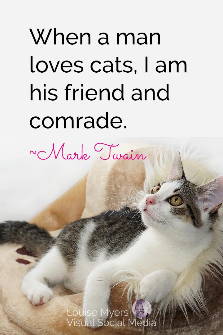 Mark Twain quote image: when a man loves cats