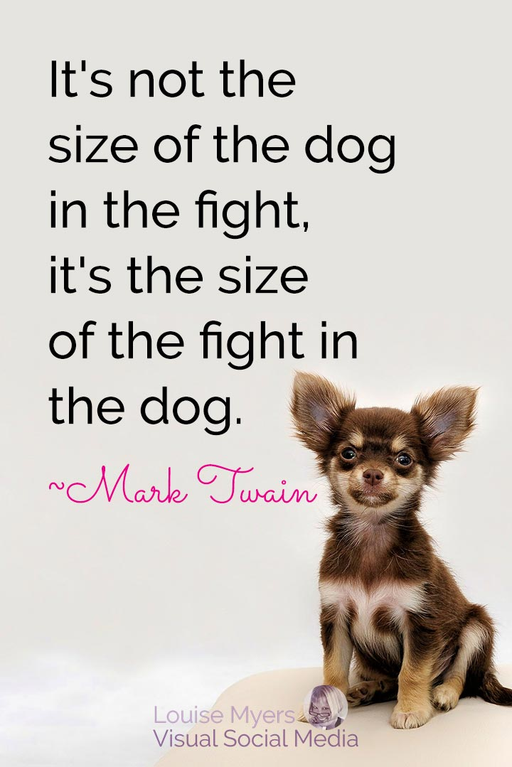 Mark Twain quote image: size of fight in the dog