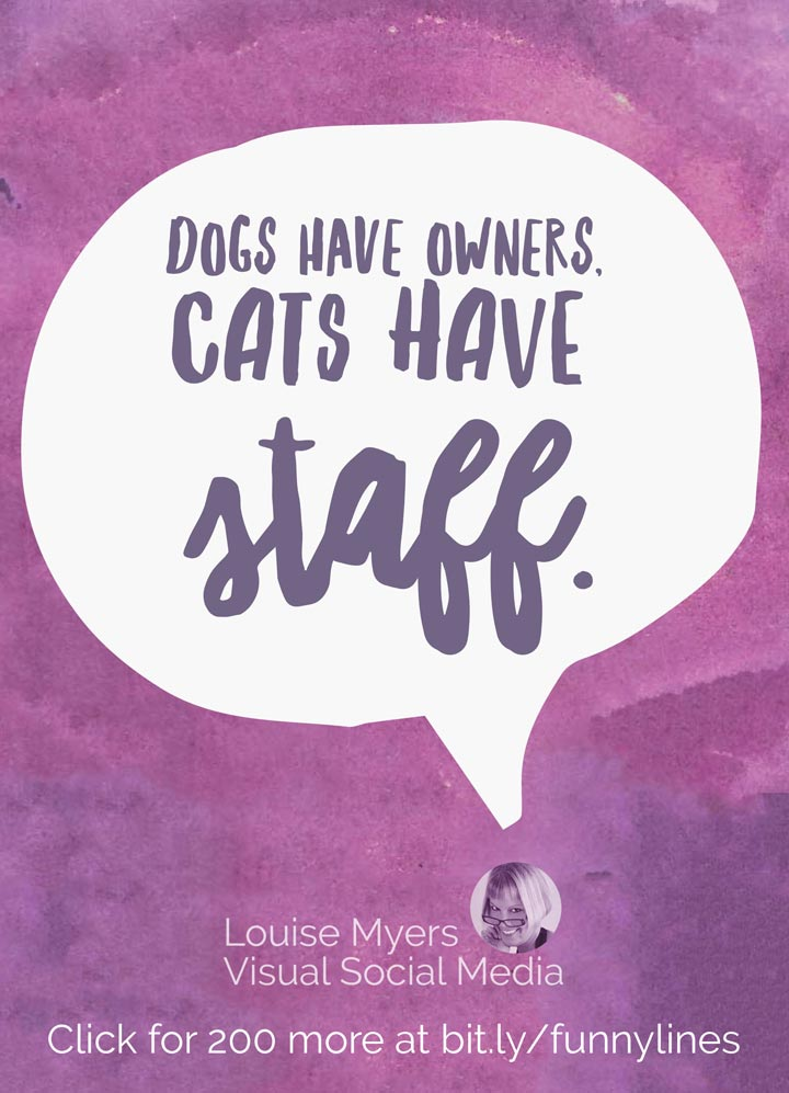 Dogs have owners, cats have staff.