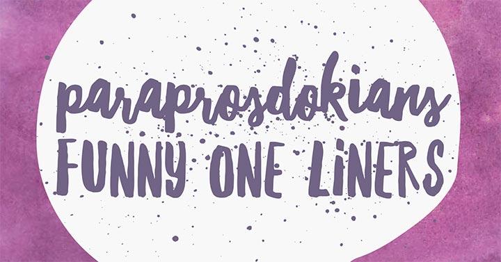 paraprosdokians one liners FB banner