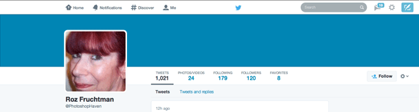 You'll see a solid bar of color if you don't have a Twitter header image.