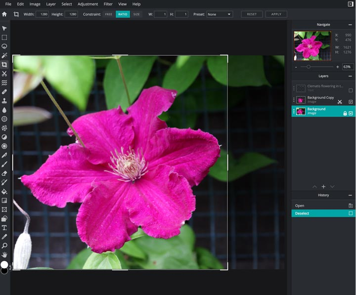 how to crop and size photo in pixlr.