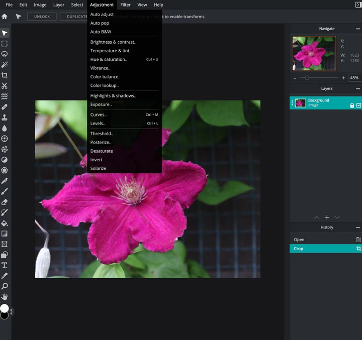 pixlr adjustment tools menu.