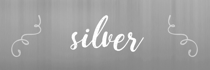 Silver Color Personality banner