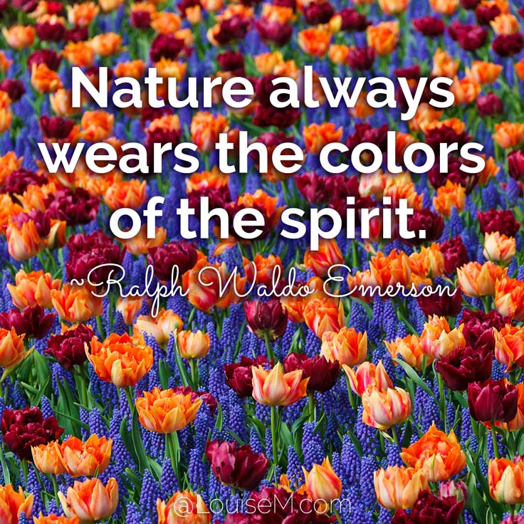 Nature Images With Quotes Download: 33 Colorful Quotes And Pictures To Energize Your Life