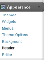 If you now look under the appearance theme you will see that some new choices have been installed.