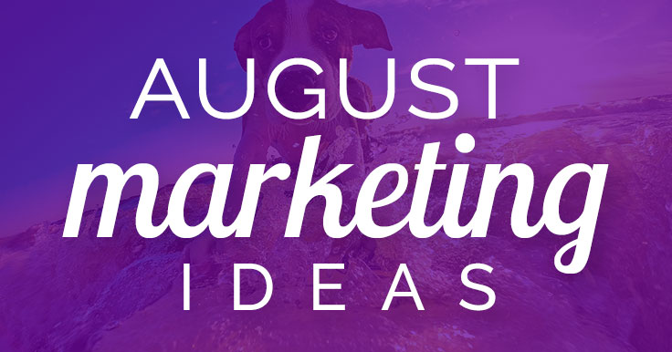 August marketing ideas banner image