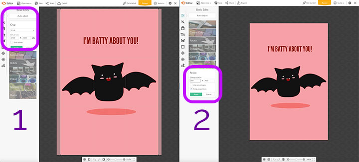 If you're making a social graphic and want a specific size, you can do that even if you start with a PicMonkey template that has a size specified already.