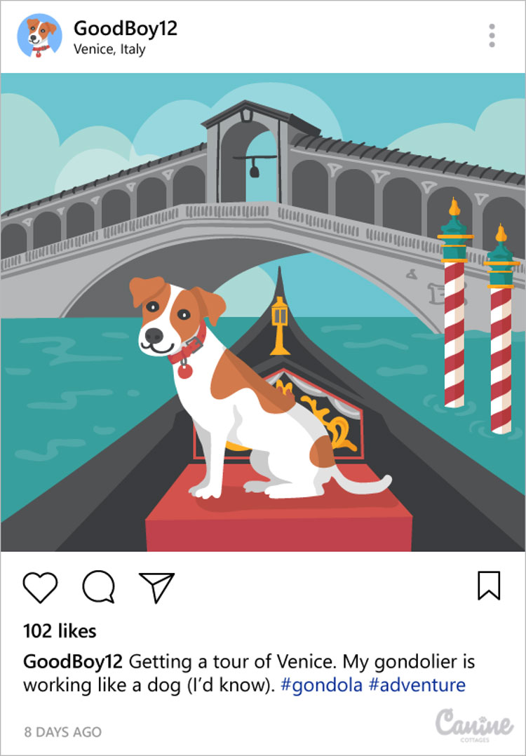Share fun activities on Instagram: dog on gondola ride