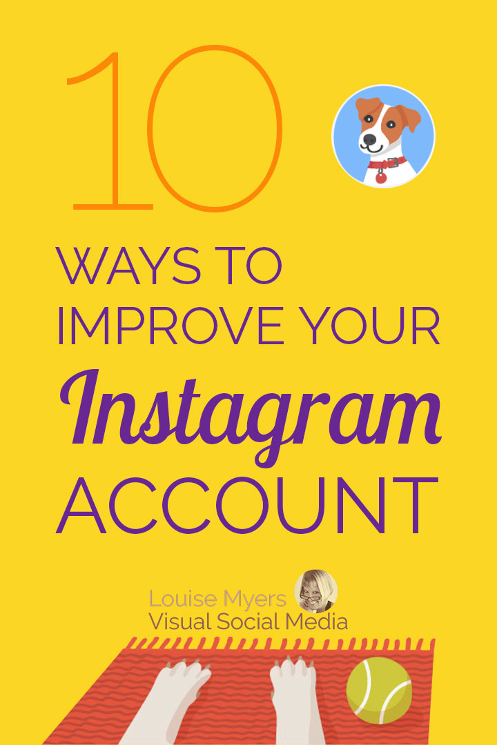 how to create instagram account for dog