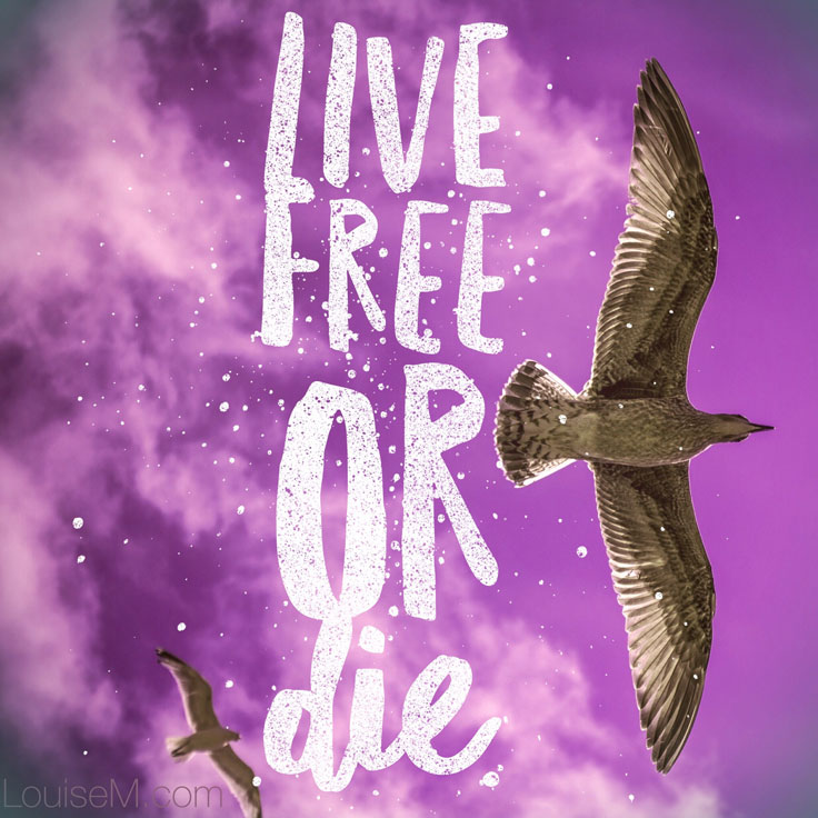 Live free or die quote image