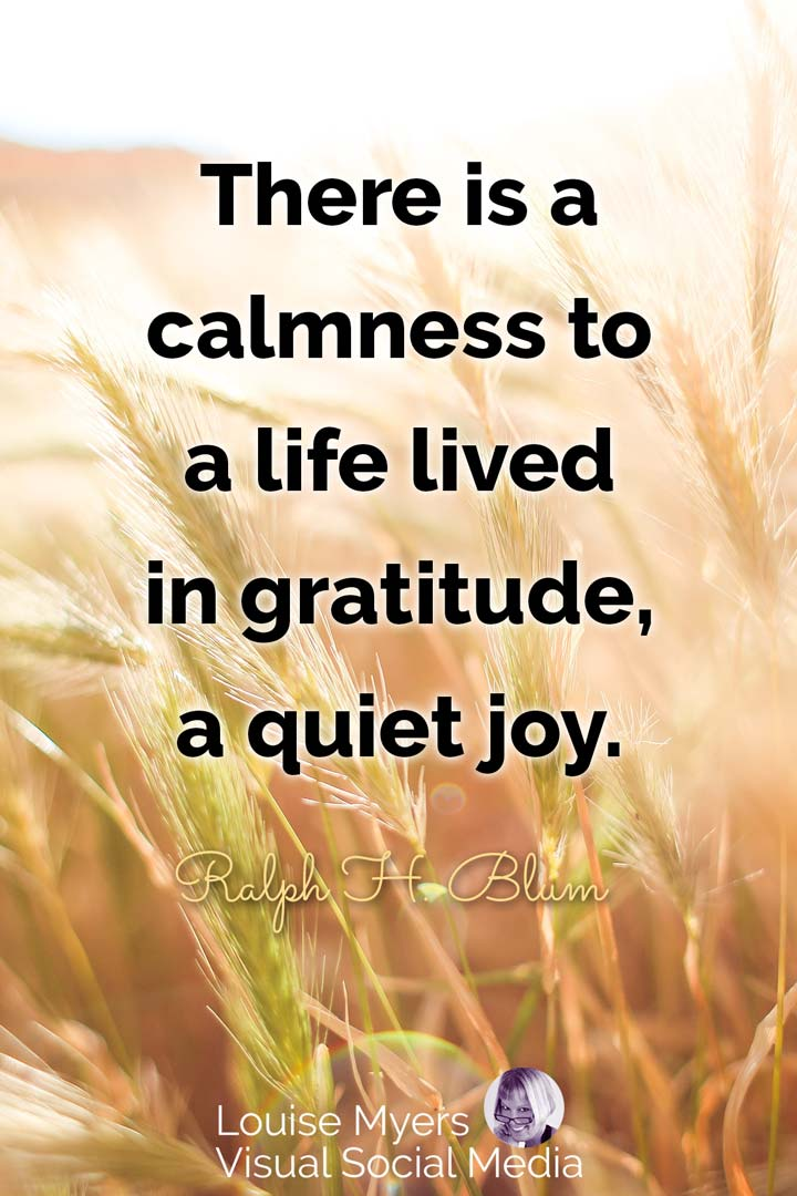 gratitude quote image: there is a calmness to life lived in gratitude