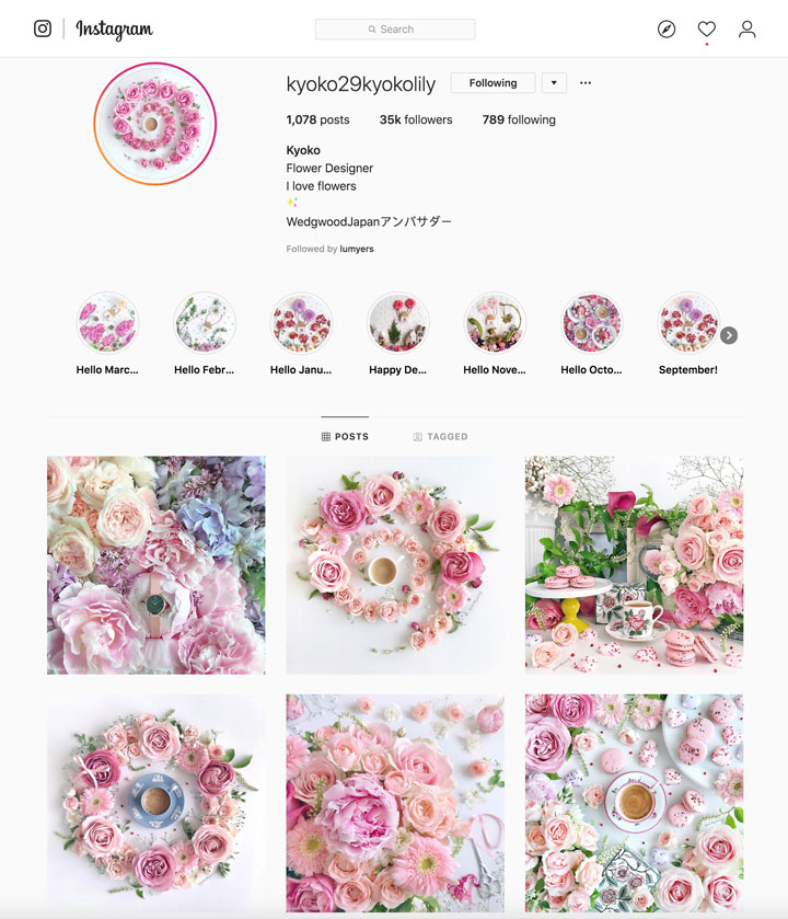 grow our Instagram following with gorgeous consistency