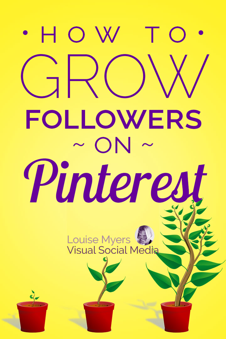 grow your Pinterest followers pin image