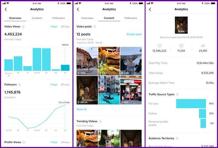 TikTok analytics screenshots