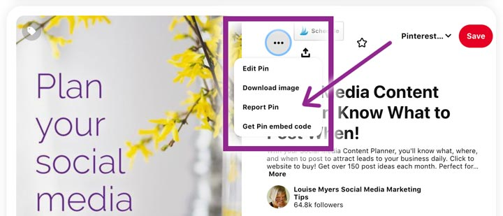 how to report a stolen pinterest pin.