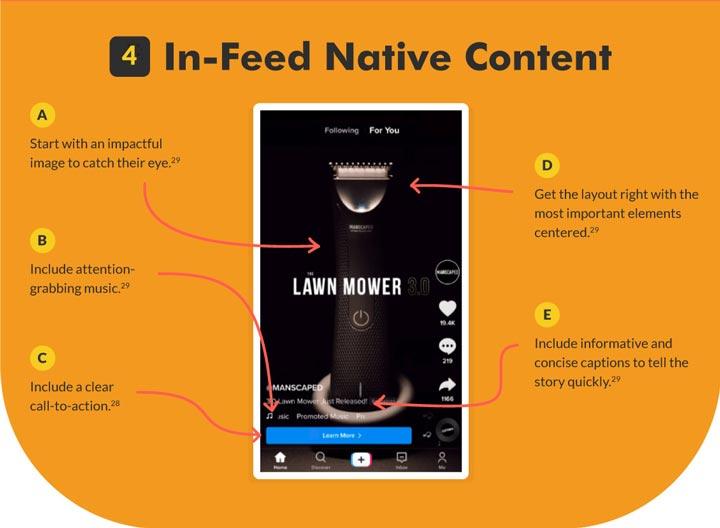 TikTok In-Feed Native Content Ad graphic.