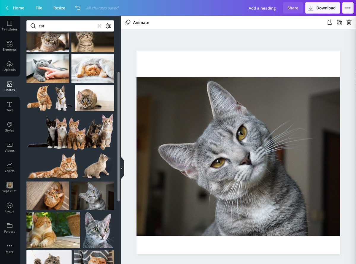 screenshot showing selecting a photo in canva.