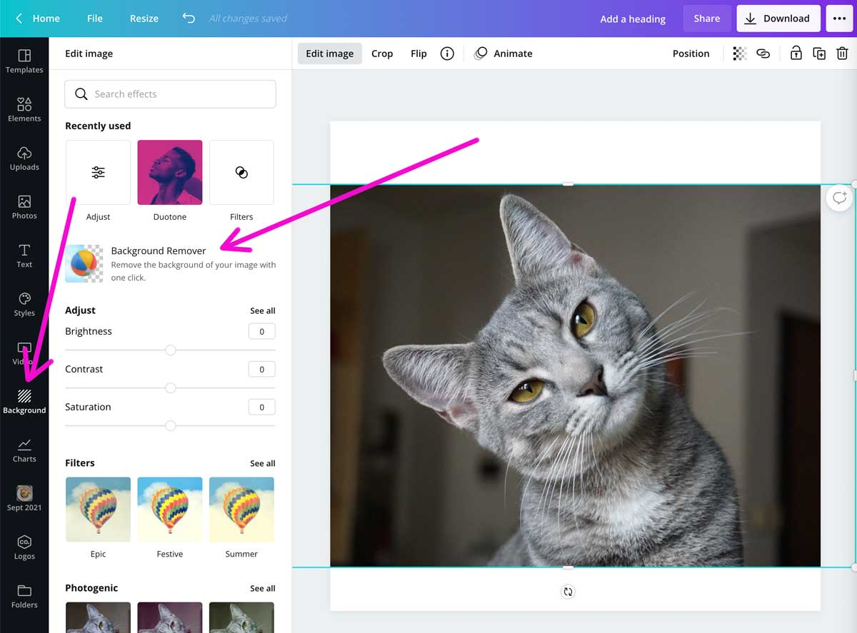 screenshot showing where to find the background remover in canva.