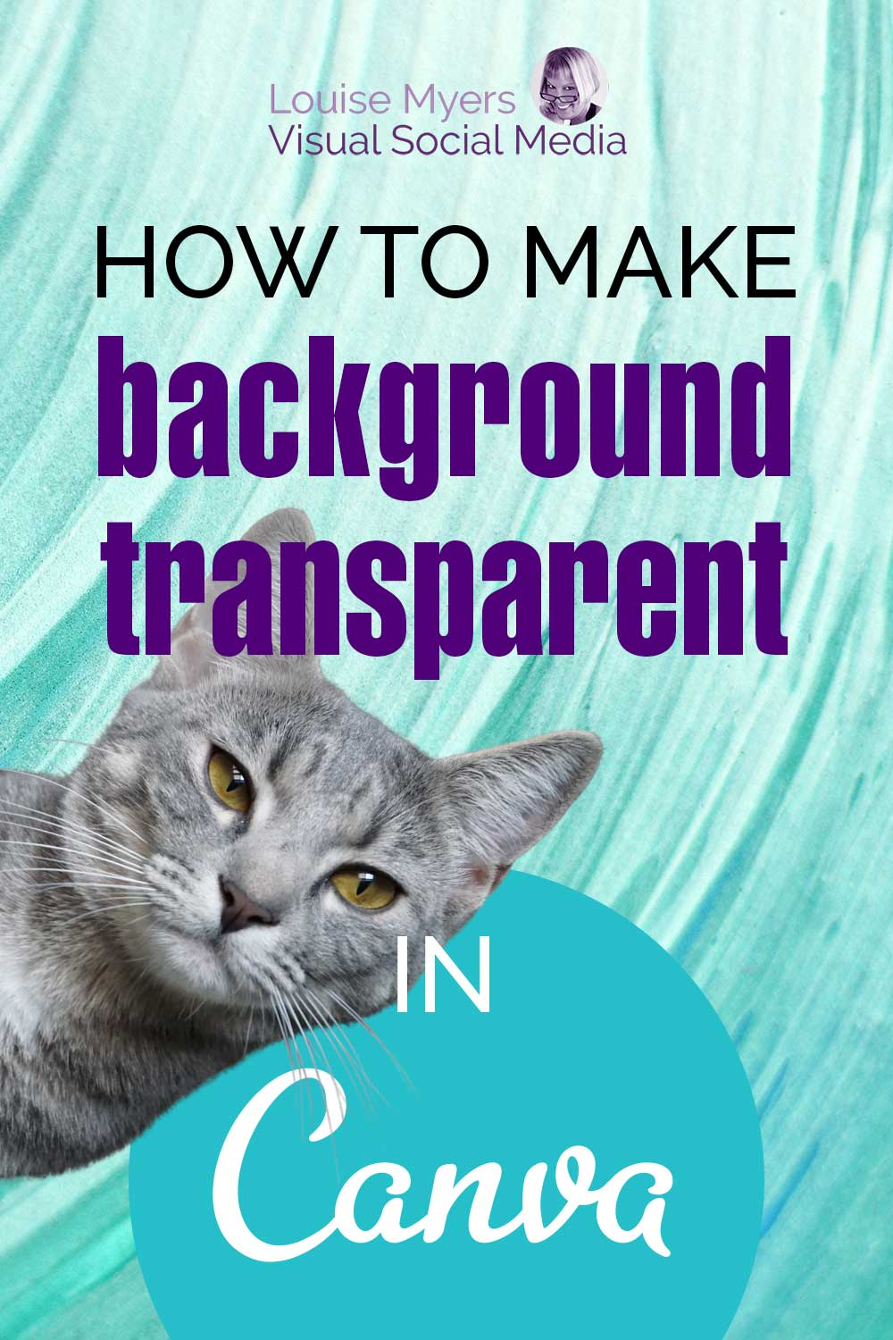 cat with transparent background on pinnable image with canva logo.