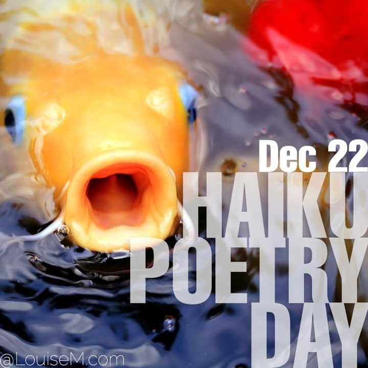 december 22 holiday haiku poetry day on photo of koi fish.