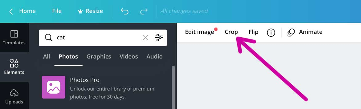 how to find the crop tool in canva screenshot.