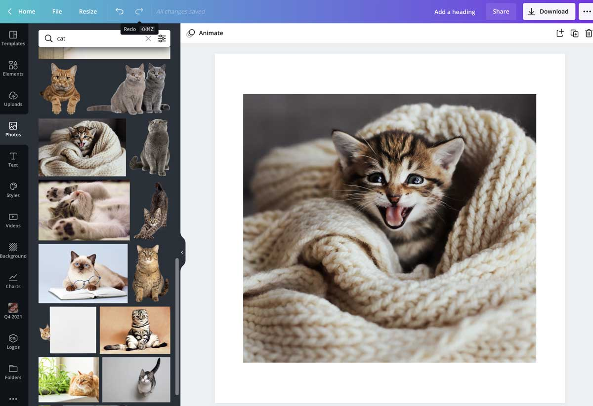 screenshot of finished cropping in canva.