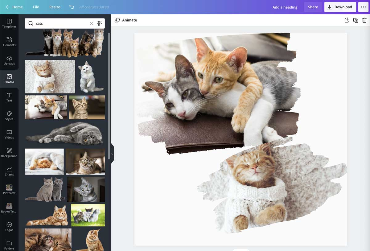 screenshot showing multiple framed photos in canva template.