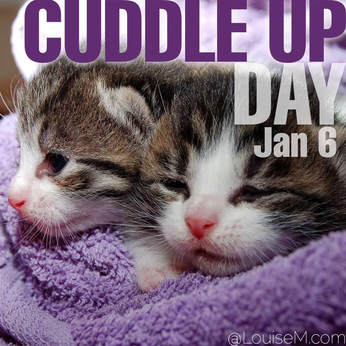 Cuddle Up Day text on photo of two cuddling cats.